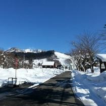 当館前の景色