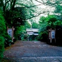 初夏/瑞々しい新緑に包まれる庭園。森林浴が気持ちの良い季節。