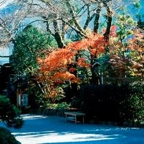 秋/玉庭での紅葉の見ごろは11月中旬から12月初旬(例年)。