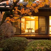 *客室一例/秋はもみじ、かえで、柿の木など。鮮やかな紅葉に染まる美しい庭を堪能。