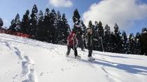 箱館山スノーシュー