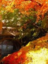 季節:秋の城下橋