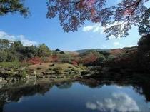 依水園紅葉1
