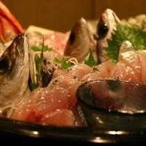 地魚のお造り盛り合わせ