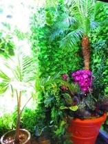 女性シャワールーム 水と緑の空間
