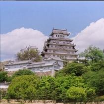 ◆姫路城と新緑