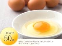 こだわり朝食【たまごかけごはん専用ランニングエッグ】