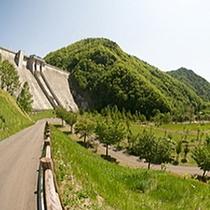 【定山渓ダム下流園地】-ピクニックにおすすめ。紅葉の穴場スポット-