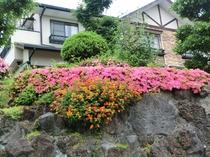 四季折々の花が咲き乱れる