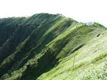 摩周湖の断崖