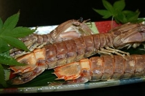 蝦蛄海老2