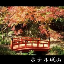 紅葉【11月下旬~】《車 約10分》