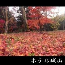 もみじの郷【11月下旬~12月上旬】 《車 約15分》