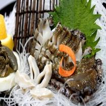 【アワビ】地元産で新鮮かつ肉厚のアワビ!相差は日本一海女さんの多い街です!