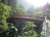 水源の森橋