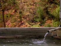 秋の紅葉を眺める~露天風呂~
