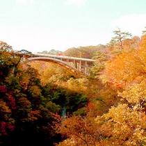 *【紅葉】大谷川が刻むV字峡で、見晴台からの紅葉が絶景♪