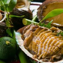 ◆獲れたて海の幸『アワビ』◆ぷっりぷりでコリコリの新鮮食感!ツウも唸らせる至極の逸品♪