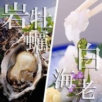 ≪岩牡蠣VS白海老造り≫二人で半分こ 一人は岩牡蠣・一人は白海老造り