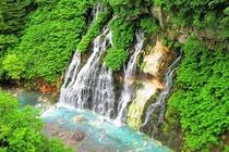 青い池しろひげの滝