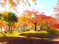 秋のホテル前庭園①