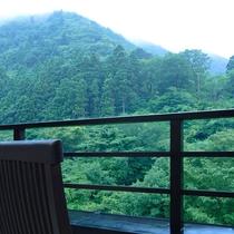 渓流側のお部屋からの眺望