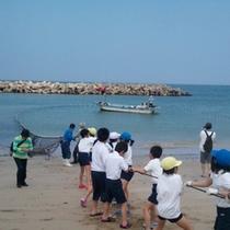夏休み地曳網無料体験
