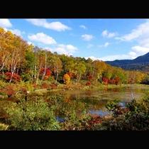 木戸池紅葉