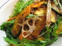 秋野菜のサラダ
