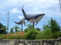 太地町に入ってすぐ!ザトウクジラのモニュメント