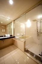 ラグジュアリーツイン浴室