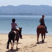 ※潮風に吹かれながらのビーチでの乗馬は爽快※