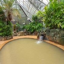 南国ムードの大浴場2