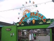 【おびひろ動物園】北海道で唯一「ぞう」のいる動物園♪ 当ホテルからは車で約10分!
