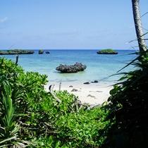 *お部屋から浜へ降りると、星砂の浜へ続いています。