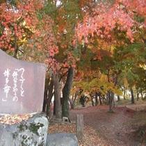 2012/11/21月の石もみじ公園♪
