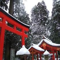 箱根神社(冬)