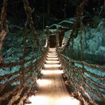 ◆冬の蔓橋