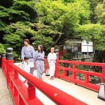 【橋】家族で過ごす休日