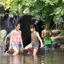 【幕山公園】川遊び