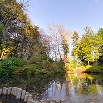 *日本庭園/約4,500坪に彩られる木々や草花。四季ごとに違う表情を見せる景観に魅了されます。
