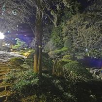 *日本庭園/約4,500坪に彩られる木々や草花。ライトアップされた夜も魅力的!