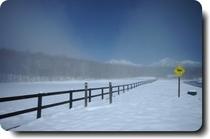 雪が舞う谷口牧場