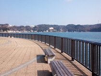 下田港04