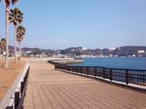下田港03