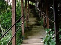 離れ山荘珍竹林(ちんちくりん)や貸切り風呂に続く、階段。