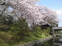 ホテル正面(春の景色)