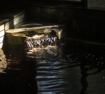 深谷のモール泉