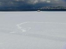 冬の海と・・・