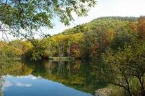 【秋】鳥沼公園の紅葉